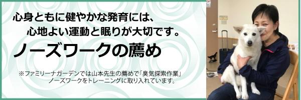 山本央子先生-ブログヘッド.jpg