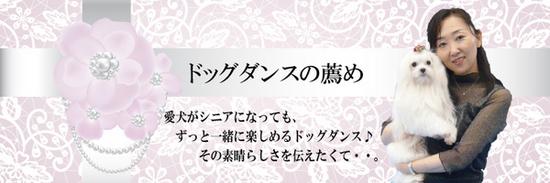 五井先生ブログトップ.jpgのサムネイル画像