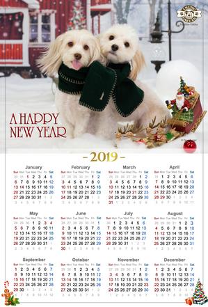 2018年クリスマス用カレンダー写真用.jpg