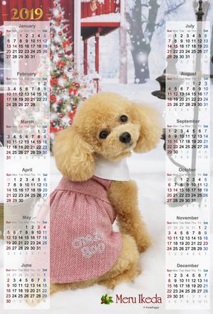2018年X用カレンダーA3ノビタテ全面写真用.jpg