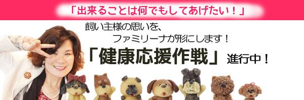 学園長ブログ健康応援作戦1-6.jpg