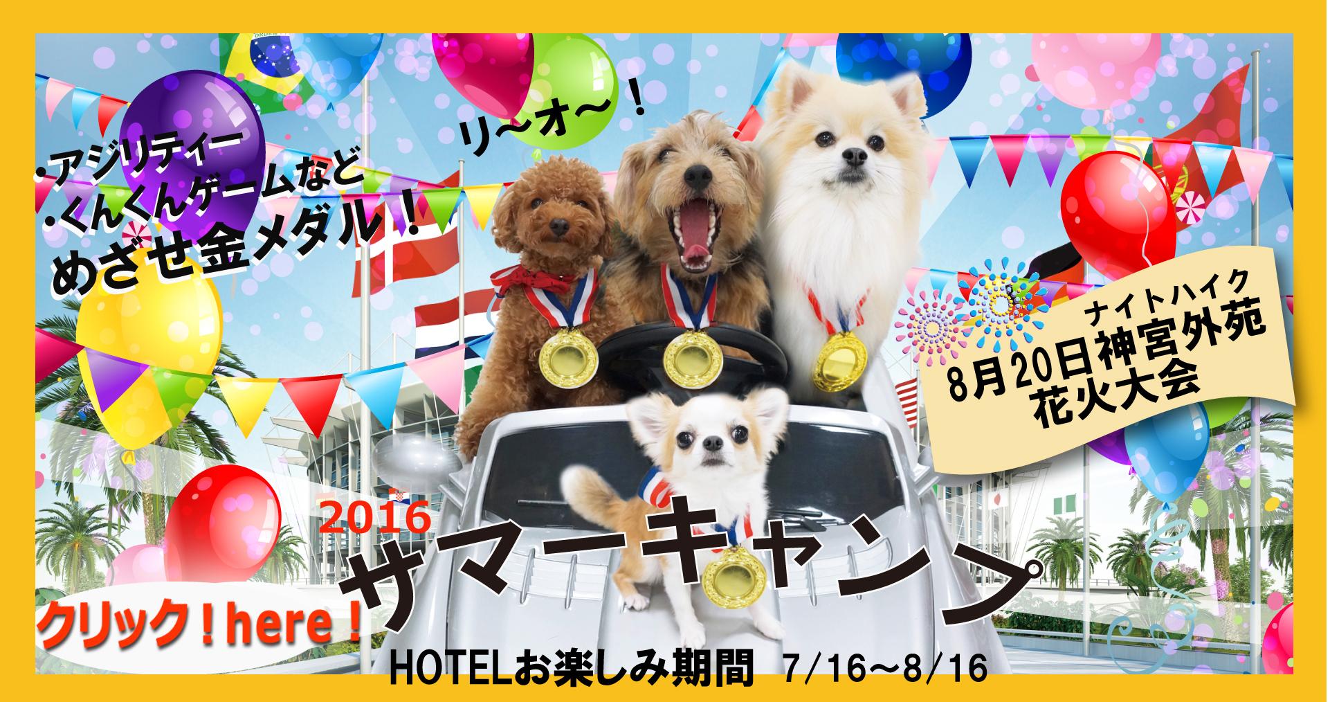 ペットホテル、しつけ教室を東京の港区でお探しならファミリーナガーデン南青山トップ画像