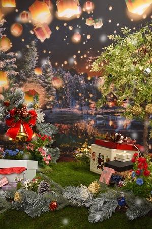 クリスマスバック.JPG