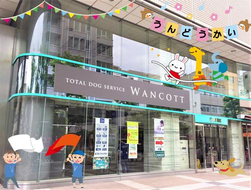 WANCOTT.png